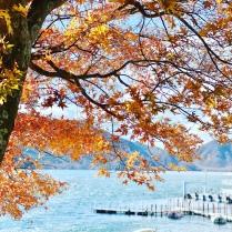 Nikko -mua thu -autumn-du-lich-nhat-ban-tu-tuc