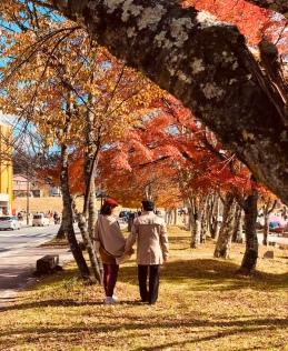 Nikko-yumoto -mua thu -autumn-du-lich-nhat-ban-tu-tuc